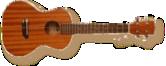 ukulele_tenor